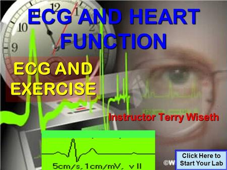 ECG AND HEART FUNCTION Click Here to Start Your Lab ECG AND EXERCISE Instructor Terry Wiseth.