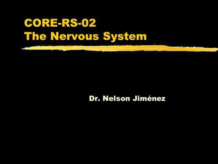 CORE-RS-02 The Nervous System Dr. Nelson Jiménez.