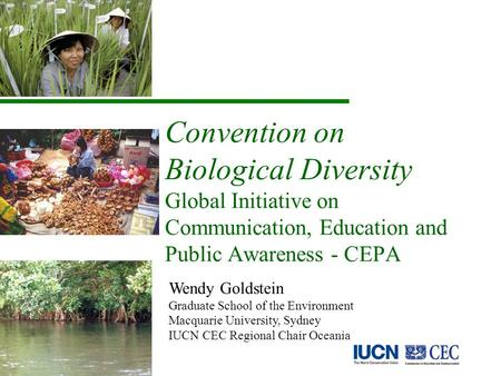 Convention on Biological Diversity Global Initiative on Communication, Education and Public Awareness - CEPA Wendy Goldstein Graduate School of the Environment.