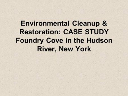 Environmental Cleanup & Restoration: CASE STUDY Foundry Cove in the Hudson River, New York.