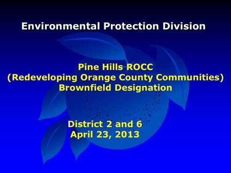 Pine Hills ROCC (Redeveloping Orange County Communities) Brownfield Designation Environmental Protection Division District 2 and 6 April 23, 2013.