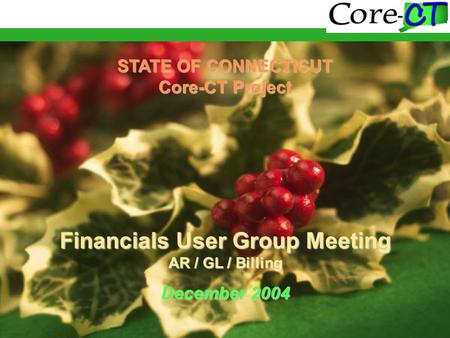 STATE OF CONNECTICUT Core-CT Project Financials User Group Meeting AR / GL / Billing December 2004.