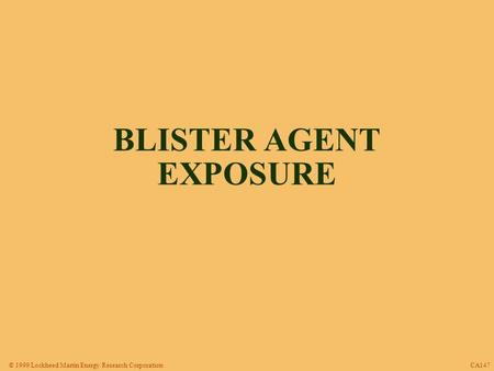 © 1999 Lockheed Martin Energy Research Corporation CA147 BLISTER AGENT EXPOSURE.