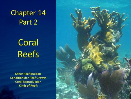 Chapter 14 Part 2 Coral Reefs Other Reef Builders Conditions for Reef Growth Coral Reproduction Kinds of Reefs.