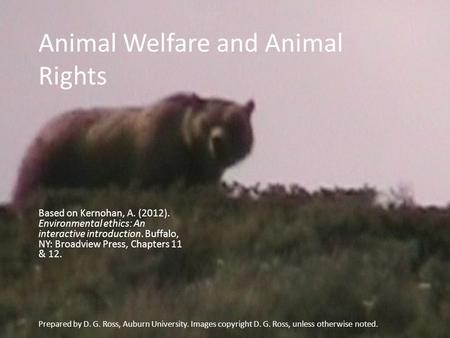 Animal Welfare and Animal Rights Based on Kernohan, A. (2012). Environmental ethics: An interactive introduction. Buffalo, NY: Broadview Press, Chapters.