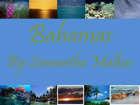 Bahamas By:Samantha Malkus. ~History~ *The first inhabitants of the Bahamas where the arawak Indians. *oct. 12, 1492 was Columbus's first encounter with.