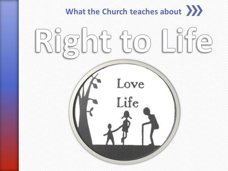 "What the Church teaches about. » ""A moral principle based on the belief that a human being has the right to live and, in particular, should not be unjustly."