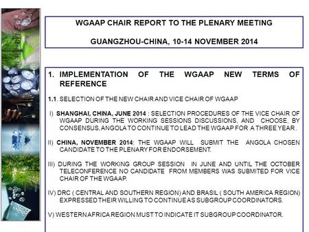 1.IMPLEMENTATION OF THE WGAAP NEW TERMS OF REFERENCE 1.1. SELECTION OF THE NEW CHAIR AND VICE CHAIR OF WGAAP I) SHANGHAI, CHINA, JUNE 2014 : SELECTION.