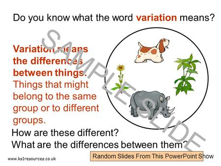 www.ks1resources.co.uk Do you know what the word variation means? How are these different? What are the differences between them? Variation means the.