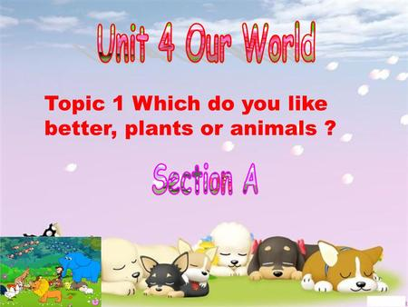 Topic 1 Which do you like better, plants or animals ?