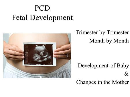 PCD Fetal Development Trimester by Trimester Month by Month Development of Baby & Changes in the Mother.