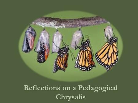 Reflections on a Pedagogical Chrysalis. Factors that Framed the Creation of Version 1.0 Honors course Desire to help students engage in more metacognition.