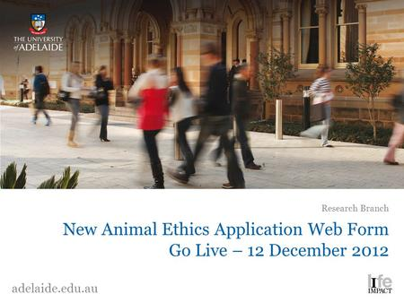 New Animal Ethics Application Web Form Go Live – 12 December 2012 Research Branch adelaide.edu.au.
