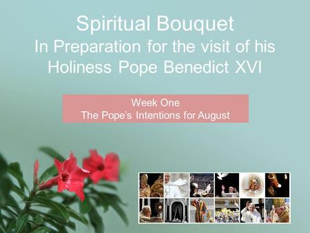 Spiritual Bouquet In Preparation for the visit of his Holiness Pope Benedict XVI Week One The Pope's Intentions for August.