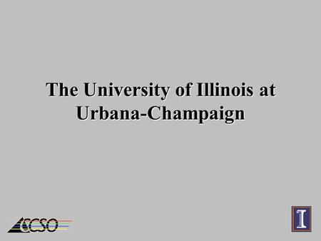 The University of Illinois at Urbana-Champaign. The Team Ed Krol – Asst Dir. Computing & Communications Bill Mischo – Engineering Librarian Mike Grady.