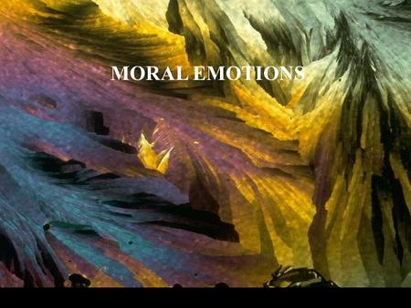 MORAL EMOTIONS. Moral emotions are morally charged emotional reactions to certain events, experiences or actions. Some are positive, as when we admire,