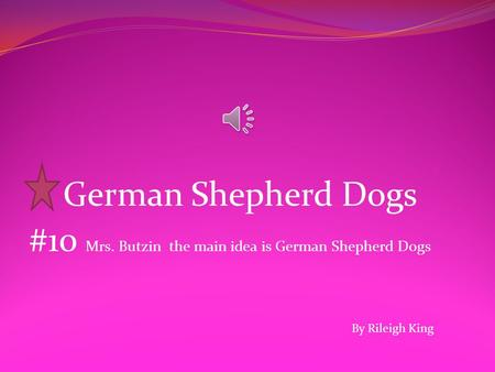 German Shepherd Dogs #10 Mrs. Butzin the main idea is German Shepherd Dogs By Rileigh King.