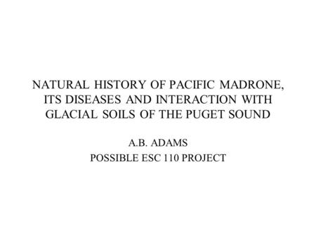 NATURAL HISTORY OF PACIFIC MADRONE, ITS DISEASES AND INTERACTION WITH GLACIAL SOILS OF THE PUGET SOUND A.B. ADAMS POSSIBLE ESC 110 PROJECT.