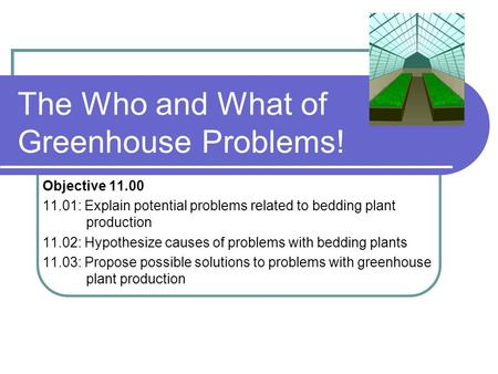 The Who and What of Greenhouse Problems! Objective 11.00 11.01: Explain potential problems related to bedding plant production 11.02: Hypothesize causes.