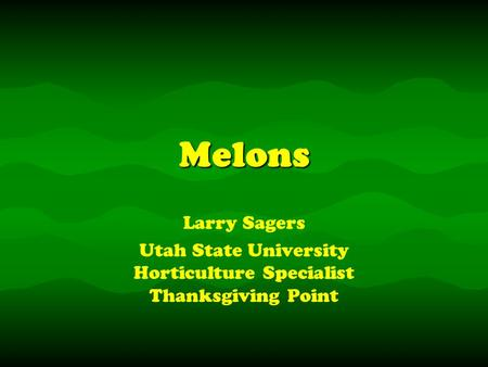 MelonsMelons Larry Sagers Utah State University Horticulture Specialist Thanksgiving Point Larry Sagers Utah State University Horticulture Specialist Thanksgiving.