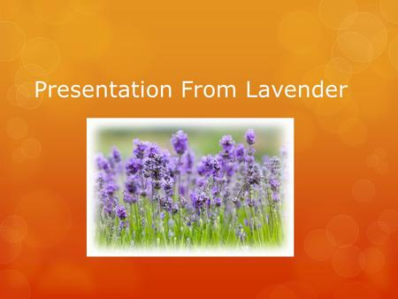 Presentation From Lavender