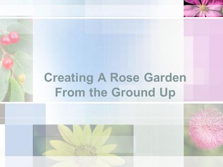 Creating A Rose Garden From the Ground Up. Course Objective Learn the basics of planting and maintaining a rose garden. You will learn the following during.