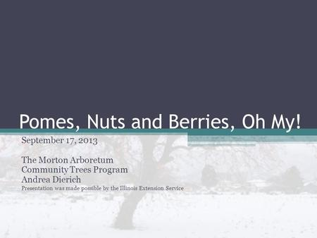 Pomes, Nuts and Berries, Oh My! September 17, 2013 The Morton Arboretum Community Trees Program Andrea Dierich Presentation was made possible by the Illinois.