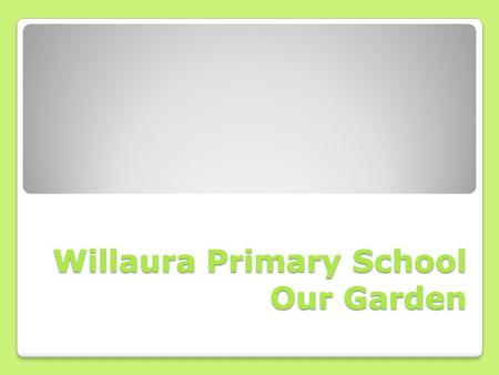 Willaura Primary School Our Garden. Willaura Primary School has always had teachers, parents and students interested in gardening. But by mid-2011 our.