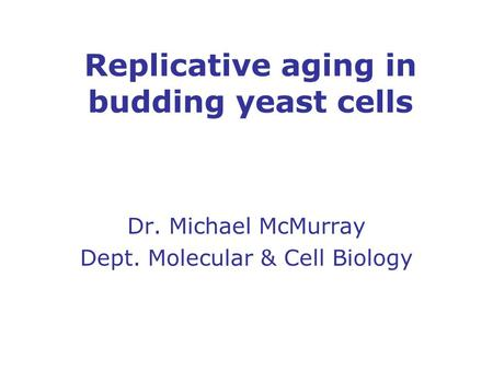 Replicative aging in budding yeast cells Dr. Michael McMurray Dept. Molecular & Cell Biology.