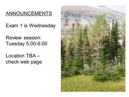 ANNOUNCEMENTS Exam 1 is Wednesday Review session: Tuesday 5:00-6:00 Location TBA – check web page.