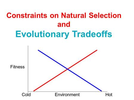 Constraints on Natural Selection Evolutionary Tradeoffs