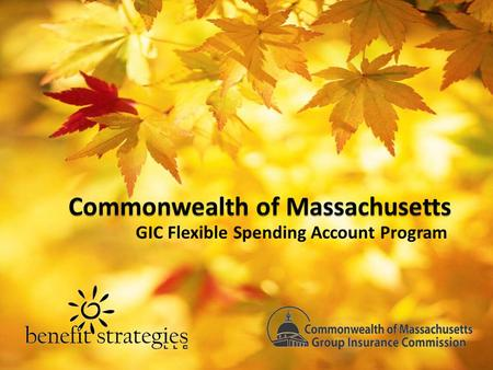 GIC Flexible Spending Account Program. Agenda Welcome & Introductions Payroll Coordinator Packets Flexible Spending Account Administration How You Can.