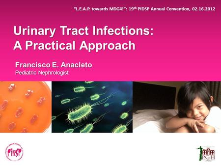 Urinary Tract Infections: A Practical Approach
