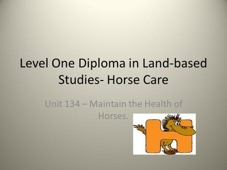 Level One Diploma in Land-based Studies- Horse Care Unit 134 – Maintain the Health of Horses.
