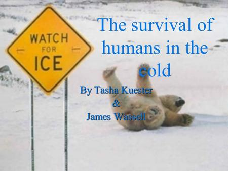 By Tasha Kuester & James Wassell The survival of humans in the cold.