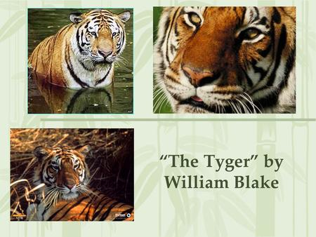"""The Tyger"" by William Blake. THE TYGER (from Songs Of Experience) By William Blake Tyger! Tyger! burning bright In the forests of the night, What immortal."