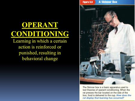 OPERANT CONDITIONING Learning in which a certain action is reinforced or punished, resulting in behavioral change.