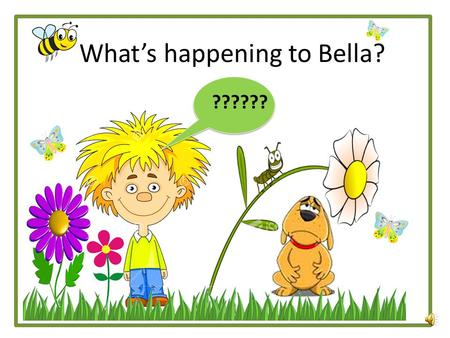 What's happening to Bella? ?????? On Monday, Sam took Bella his dog for a nice long walk. Bella loves to run during her walks, but today, Bella was SOOOOOO.