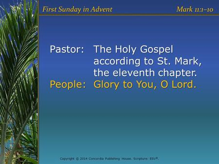 Pastor:The Holy Gospel according to St. Mark, the eleventh chapter. People:Glory to You, O Lord. First Sunday in Advent Mark 11:1–10 Copyright © 2014 Concordia.