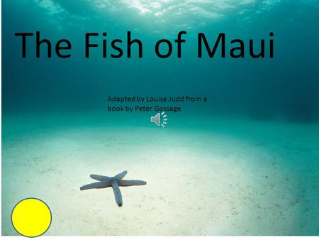 The Fish of Maui Adapted by Louise Judd from a book by Peter Gossage.