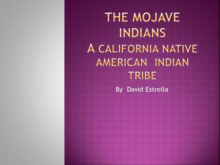 By David Estrella. Do you know about the Mojave Indians, a California native American tribe. The Mojave lived from Arizona toMexico. They lived along.