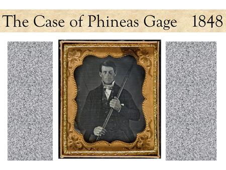The Case of Phineas Gage 1848. On or near this site in Cavendish, Vermont, workers were using black powder to break up the rock of this railroad embankment.
