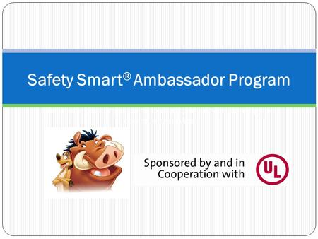 Safety Smart  Ambassador Program LifeSmarts challenges teens to engage in service learning and community service.