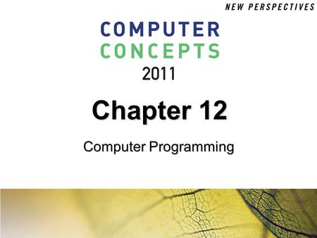 Chapter 12 Computer Programming.