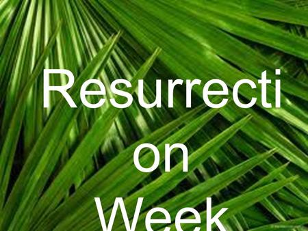 Resurrecti on Week. John 12:12-19 Blessed To be Happy.