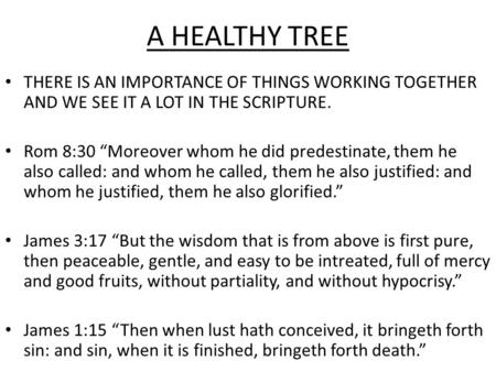 "A HEALTHY TREE THERE IS AN IMPORTANCE OF THINGS WORKING TOGETHER AND WE SEE IT A LOT IN THE SCRIPTURE. Rom 8:30 ""Moreover whom he did predestinate, them."