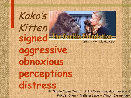 Koko's Kitten signed aggressive obnoxious perceptions distress