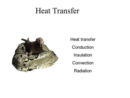 Heat Transfer Heat transfer Conduction Insulation Convection Radiation.