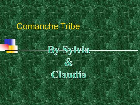 Comanche Tribe By Sylvia & Claudia.
