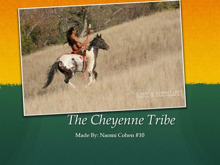 The Cheyenne Tribe Made By: Naomi Cohen #10.